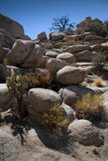 Thumbnail: Joshua Tree Highlands House - Ridge
